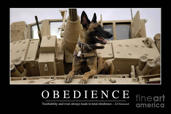 Horizontal Poster featuring the photograph Obedience Inspirational Quote by Stocktrek Images