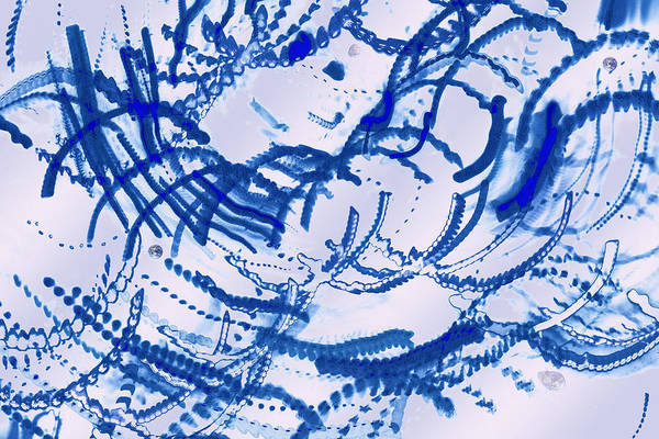 Particles Of Blue Poster featuring the photograph Particles Of Blue by Kellice Swaggerty