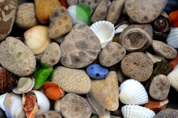 Stone Poster featuring the photograph Petoskey Stones Lll by Michelle Calkins