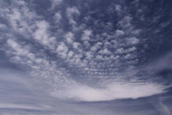 Blue Sky Poster featuring the photograph Reach For The Sky 28 by Mike McGlothlen