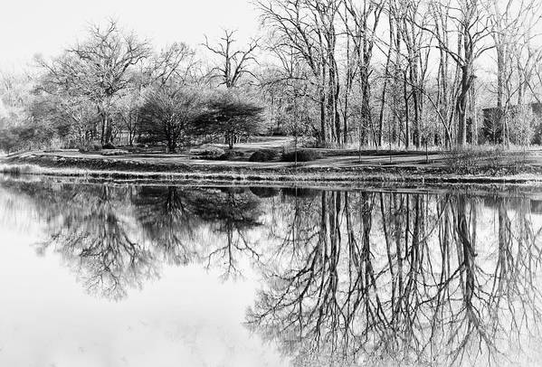 Landscape Poster featuring the photograph Reflection In Black And White by Julie Palencia