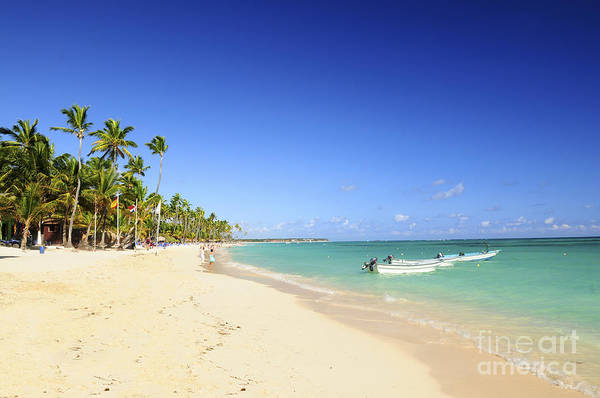 Sea Poster featuring the photograph Sandy Beach On Caribbean Resort by Elena Elisseeva