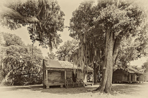 Evergreen Plantation Poster featuring the photograph Slave Quarters Sepia by Steve Harrington