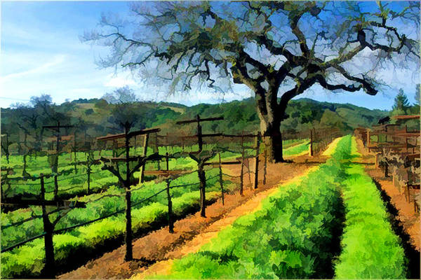 Wine Poster featuring the painting Spring In The Vineyard by Elaine Plesser