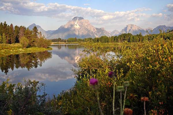 Grand Teton National Park Poster featuring the photograph Sunrise At Oxbow Bend 5 by Marty Koch