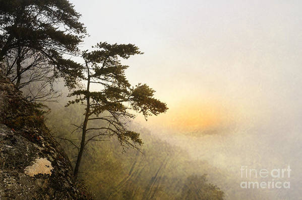 Fog Poster featuring the photograph Sunrise In The Mist - D004200a-a by Daniel Dempster
