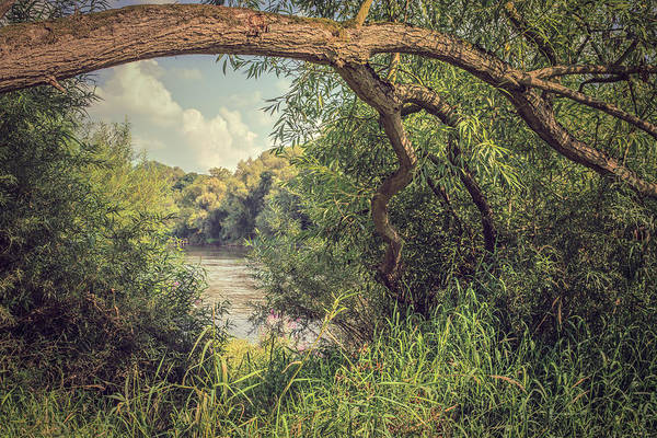 River Poster featuring the photograph The River Severn At Buildwas by Amanda Elwell