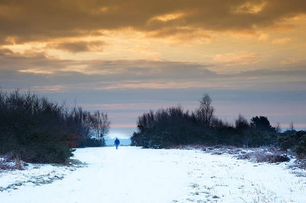 Winter Poster featuring the photograph Vibrant Winter Sunrise Landscape Over Snow Covered Countryside by Matthew Gibson