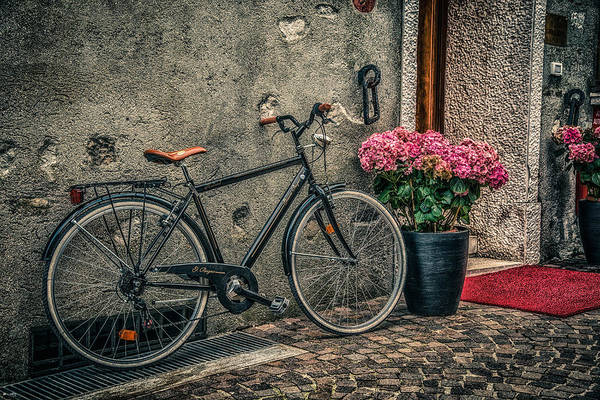 Bicycle Poster featuring the photograph Vintage Bicycle by Dobromir Dobrinov