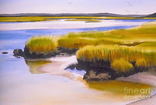 Water Poster featuring the painting Yarmouthport Marsh by Karol Wyckoff