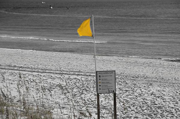 Coastline Poster featuring the photograph Yellow Hazard by Susan Leggett