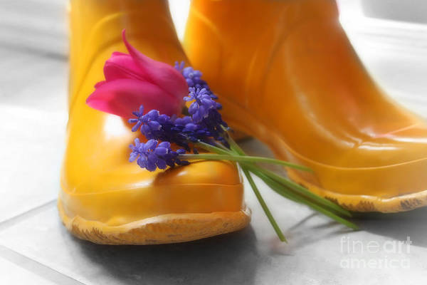 Purple Poster featuring the photograph Spring Boots by Cathy Beharriell