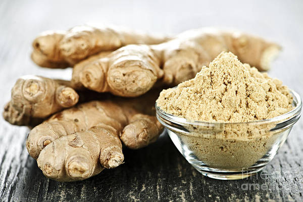Ginger Poster featuring the photograph Ginger Root by Elena Elisseeva