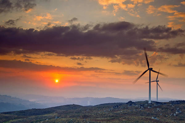 Alternative Poster featuring the photograph Wind Turbines At Sunset by Andre Goncalves