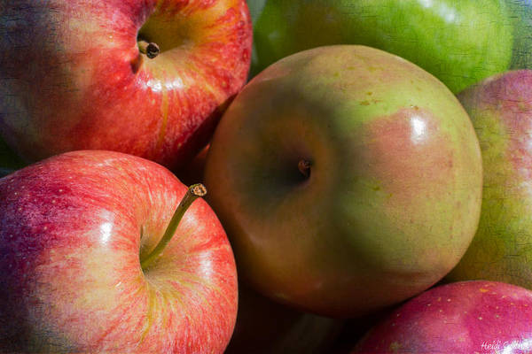 Apple Poster featuring the photograph A Variety Of Apples by Heidi Smith