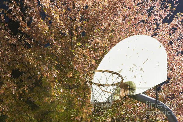 Athletics Poster featuring the photograph Basketball Hoop by Andersen Ross