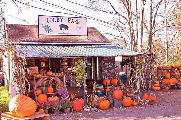 Farm Poster featuring the photograph Colby Farm by Kristine Patti