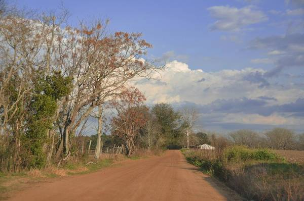 Landscapes Poster featuring the photograph Country Road by Jan Amiss Photography