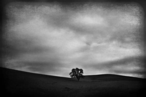 Landscape Poster featuring the photograph Emptiness by Laurie Search