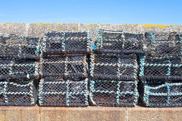 crab Nets Poster featuring the photograph Fishing Baskets by Tom Gowanlock