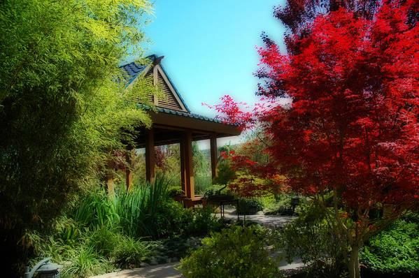 Gardens Poster featuring the photograph Garden Retreat by Lynn Bauer
