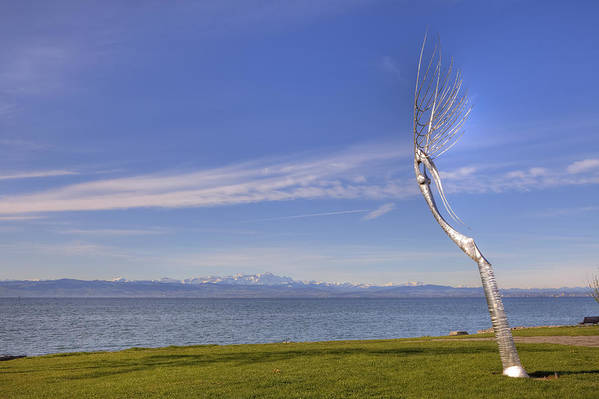 Friedrichshafen Poster featuring the photograph Lake Constace Friedrichshafen by Joana Kruse
