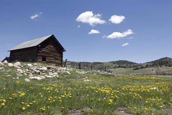 Day Poster featuring the photograph Log Cabin On The High Country Ranch by Rich Reid