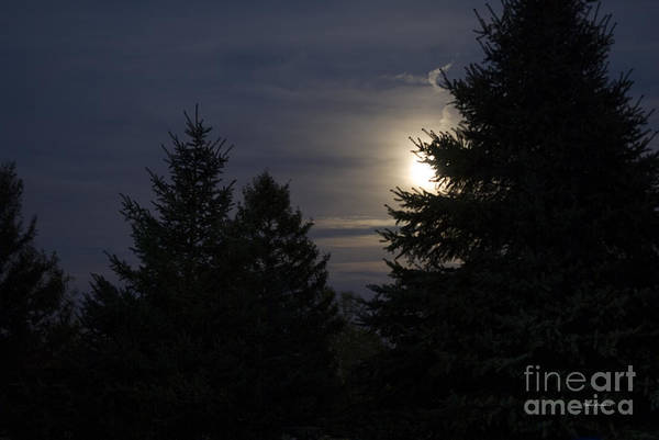 Full Moon Poster featuring the photograph Moon Rising 01 by Thomas Woolworth