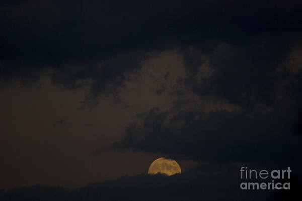 Full Moon Poster featuring the photograph Moon Rising 03 by Thomas Woolworth