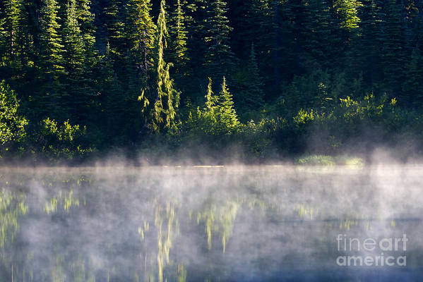 Lake Poster featuring the photograph Morning Mist by Mike Dawson