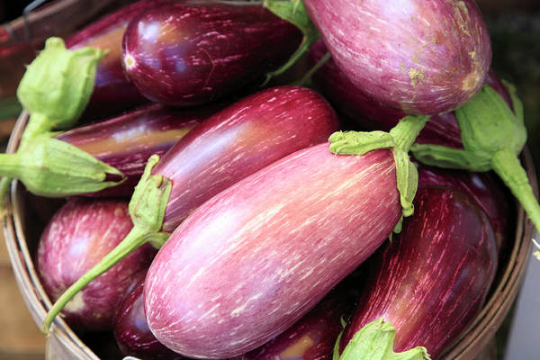 Horizontal Poster featuring the photograph Organic Eggplant by Wendy Connett