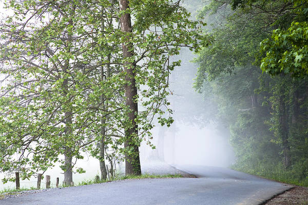 Cades Cove Poster featuring the photograph Path Into The Fog by Andrew Soundarajan