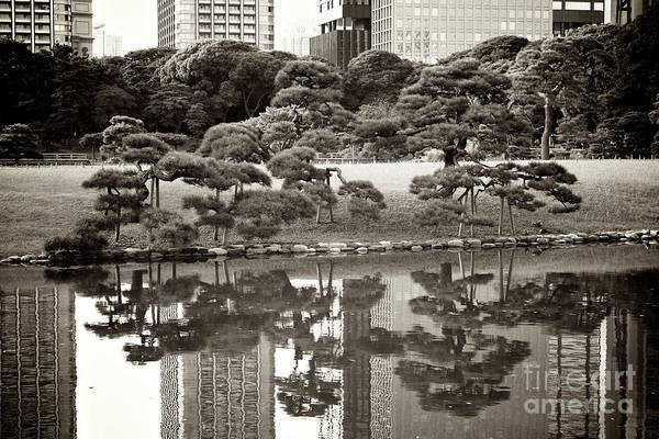 Tokyo Poster featuring the photograph Quiet Moment In Tokyo by Carol Groenen