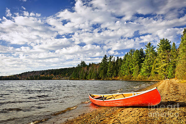 Canoe Poster featuring the photograph Red Canoe On Lake Shore by Elena Elisseeva