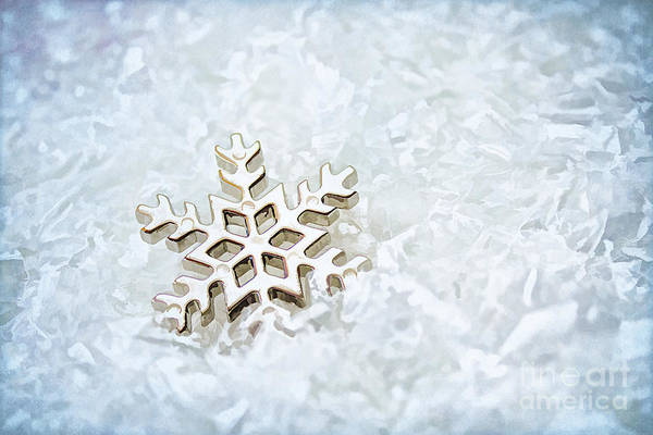 Abstract Poster featuring the photograph Snowflake by Darren Fisher