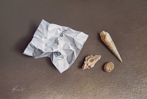 Shells Poster featuring the drawing Three Shells For Collection by Elena Kolotusha