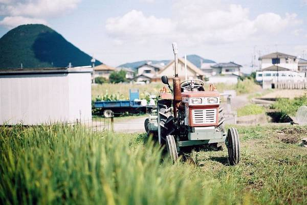 Horizontal Poster featuring the photograph Tractor by Dapple Dapple