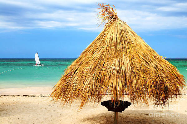Umbrella Poster featuring the photograph Tropical Beach by Elena Elisseeva