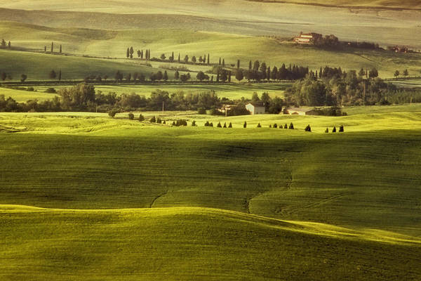 Tuscany Poster featuring the photograph Tuscan Fields by Andrew Soundarajan