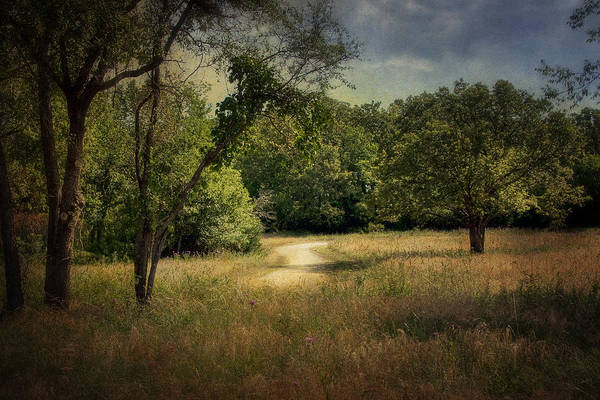 Landscape Poster featuring the photograph Wandering Path I by Tamyra Ayles
