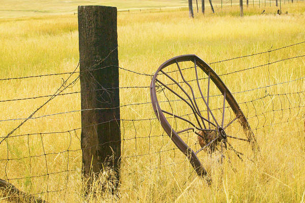 Posts Poster featuring the photograph Wheel Looking For A Tractor by Rich Franco