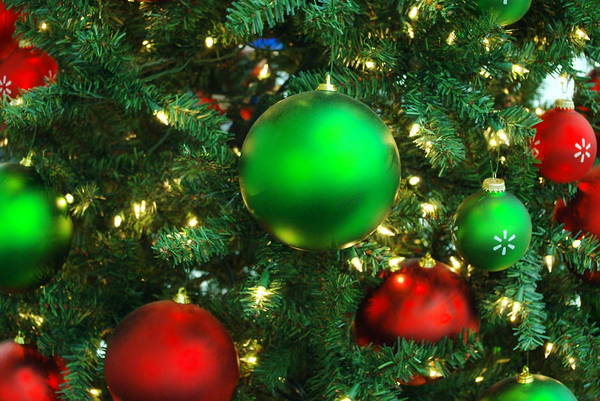 Holidays Poster featuring the photograph Red And Green Holiday by Karen Musick