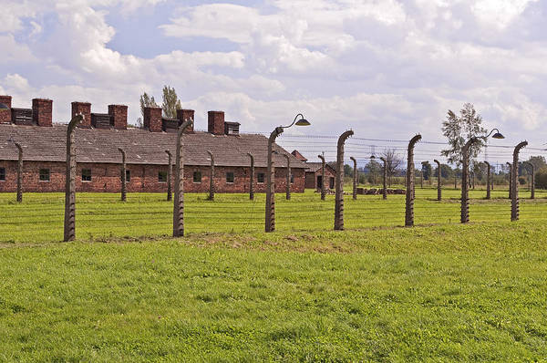 Auschwitz Poster featuring the photograph Auschwitz Birkenau Concentration Camp. by Fernando Barozza
