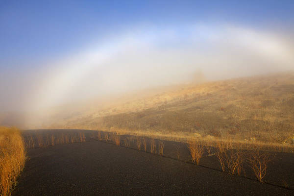 Fog Bow Poster featuring the photograph Autumn Fog Bow by Mike Dawson