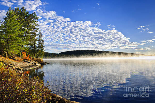 Foggy Poster featuring the photograph Autumn Lake Shore With Fog by Elena Elisseeva