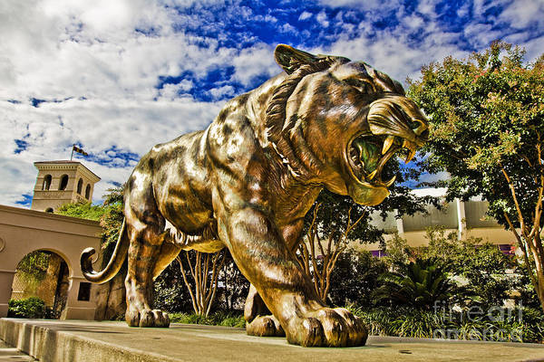 Mike The Tiger Poster featuring the photograph Big Mike by Scott Pellegrin