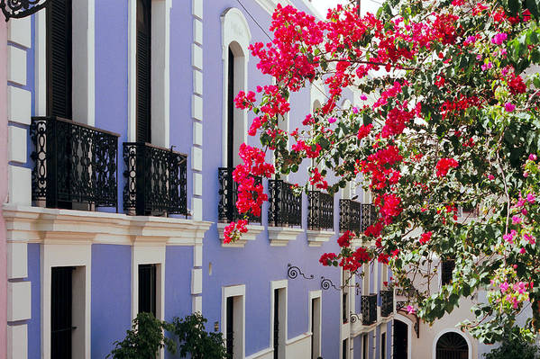Architecture Poster featuring the photograph Colorful Balconies Of Old San Juan Puerto Rico by George Oze