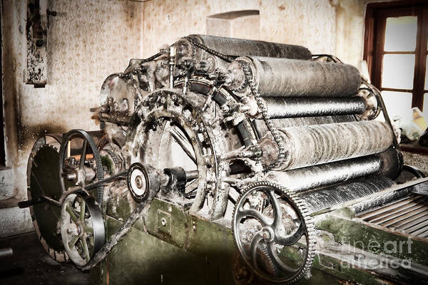 Machinery Poster featuring the photograph Complicated by Gabriela Insuratelu