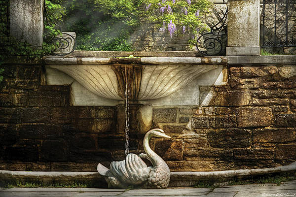Savad Poster featuring the photograph Flower - Wisteria - Fountain by Mike Savad