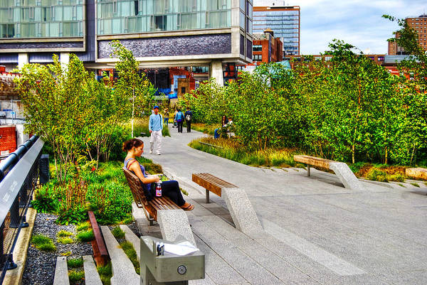 High Line Park Poster featuring the photograph Girl Uninterrupted On The High Line by Randy Aveille